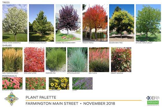 Plant Palette Nov 2018