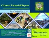 Citizen's Financial Report Calendar 2019